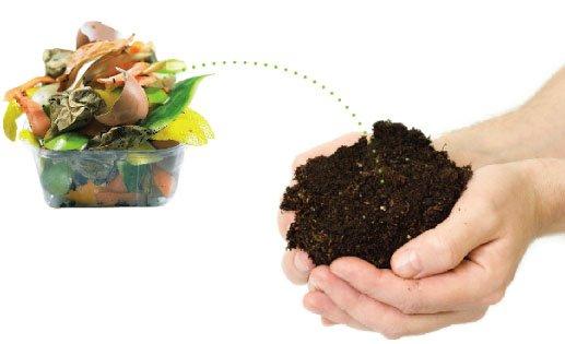 """""""DESENTUPIDORA MARINGÁ"""", 5 resíduos que podem ser compostados e você não sabia!'"""